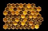 buzzbalm Fermented Bee Pollen